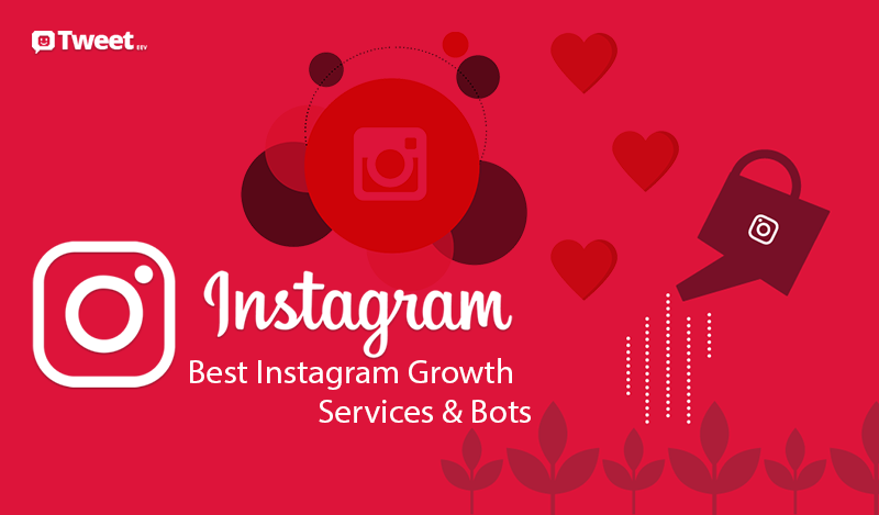 Best Instagram Growth Services & Bots